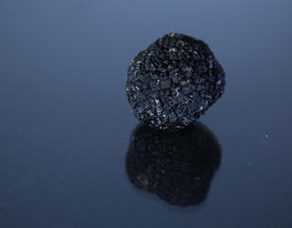 Black truffle on a reflective surface