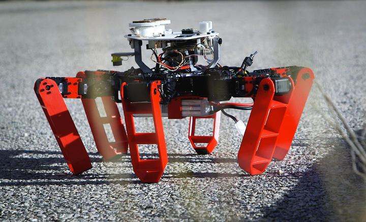 Six legged robot outside