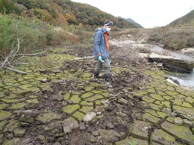 Learning from the Fukushima decontamination