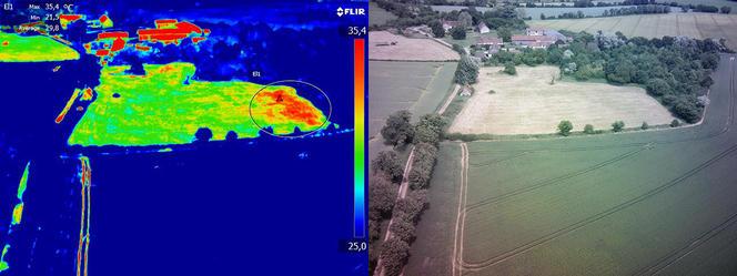Variation thermique des céréales dans un champ