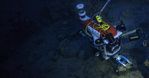 Robot exploring shipwreck