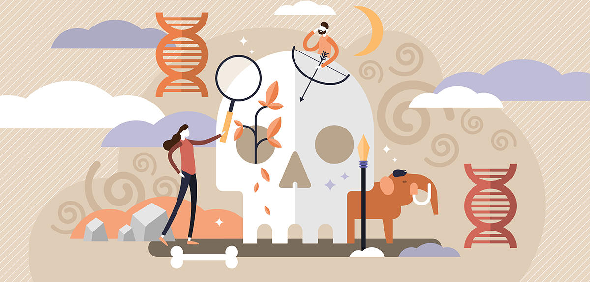 Mapping the genetic relations between ancient populations