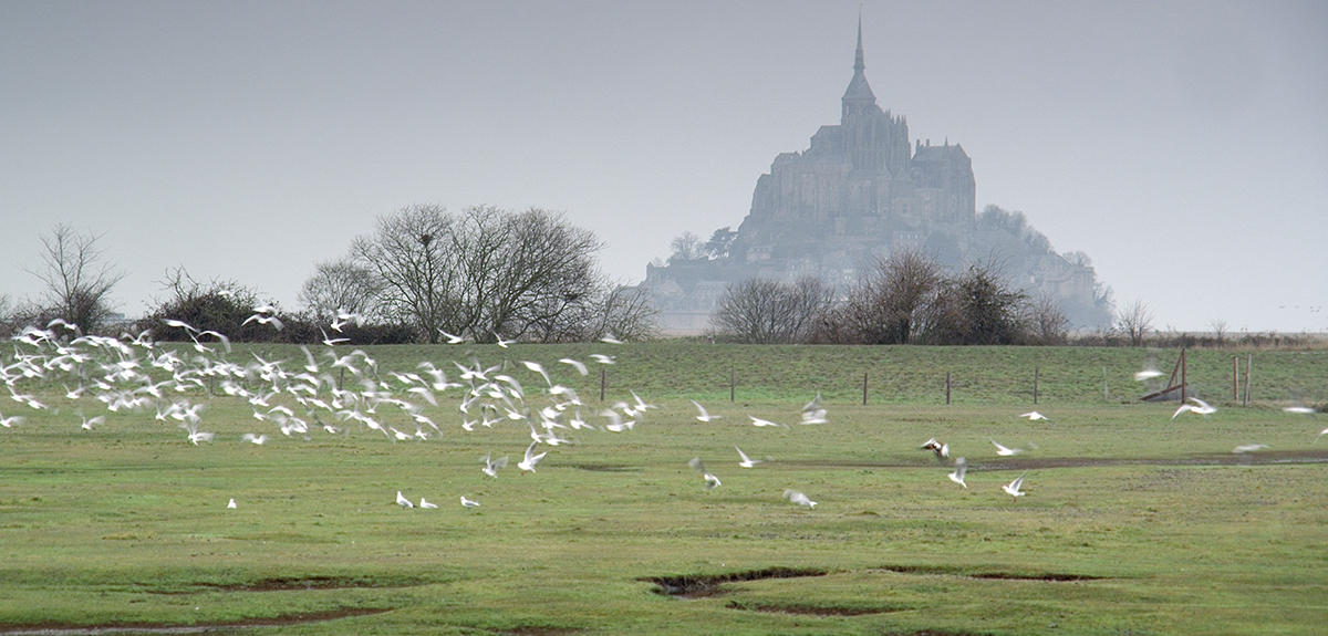Mont Saint Michel Reveals New Secrets | CNRS News
