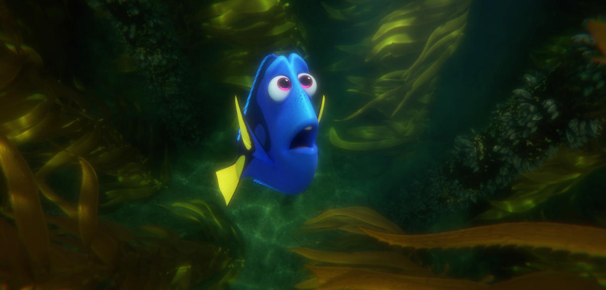 Whatever Happened to Baby Dory? | CNRS News