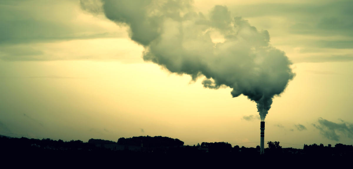 Turning CO2 into a Valuable Resource   CNRS News