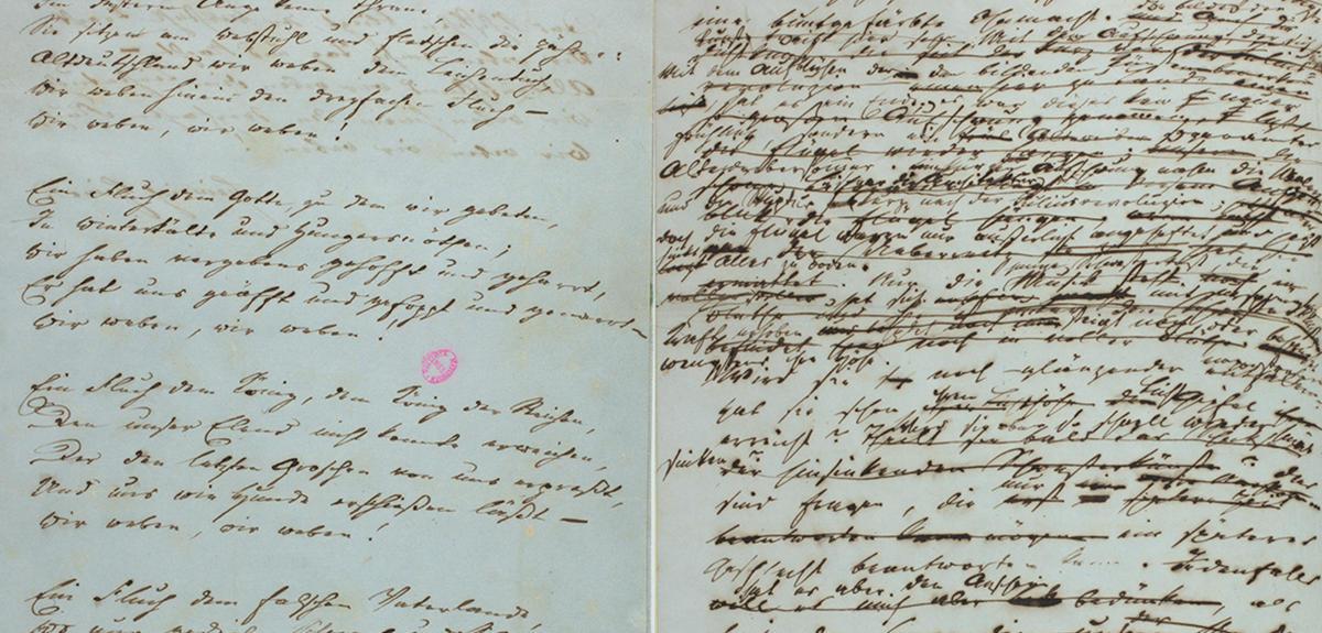 The Genetic Origins of Literary Works